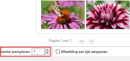 Aantal exemplaren optie in het Afbeeldingen afdrukken venster in Windows 10